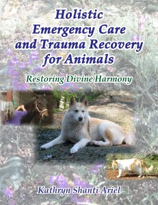 Holistic Emergency Care and Trauma Recovery for Animals cover